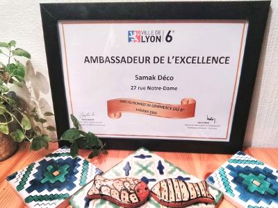 Samak récompensé par la Mairie de Lyon 6